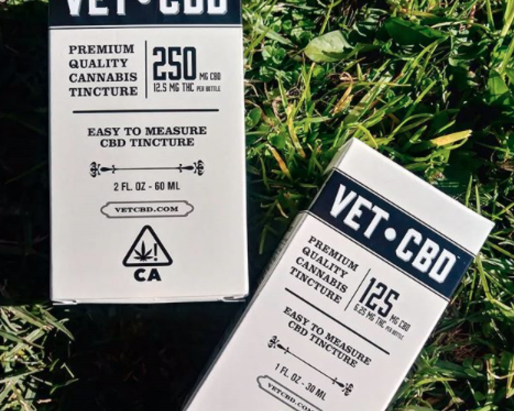 Vet CBD Education Day